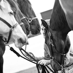 chris-with-group-of-horses-bw